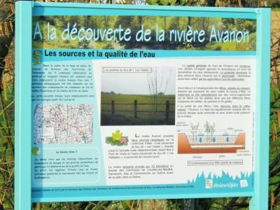 Sentier Avanon.JPG