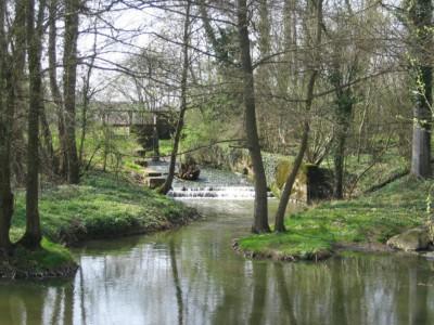 Confluence Ruisseau du Bourg - Chalaronne
